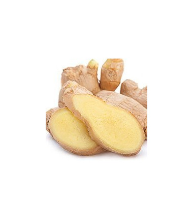 Ginger 100% essential oil